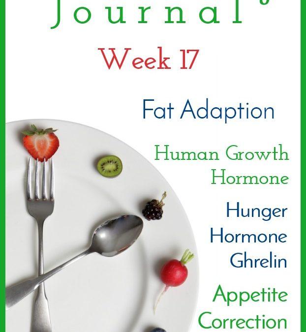 Intermittent Fasting Journal – Week 17