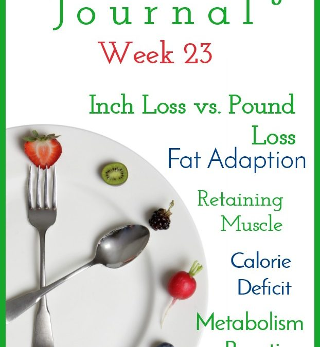 Intermittent Fasting Journal – Week 23
