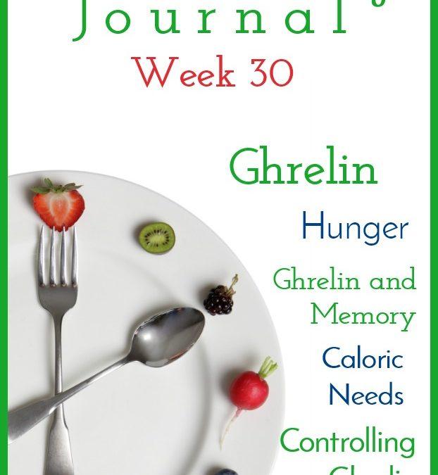 Intermittent Fasting Journal – Week 30
