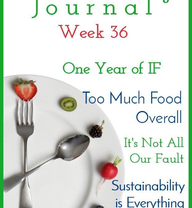 Intermittent Fasting Journal – Week 36
